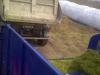 kamionski istovar kukuruzne silaže-00476